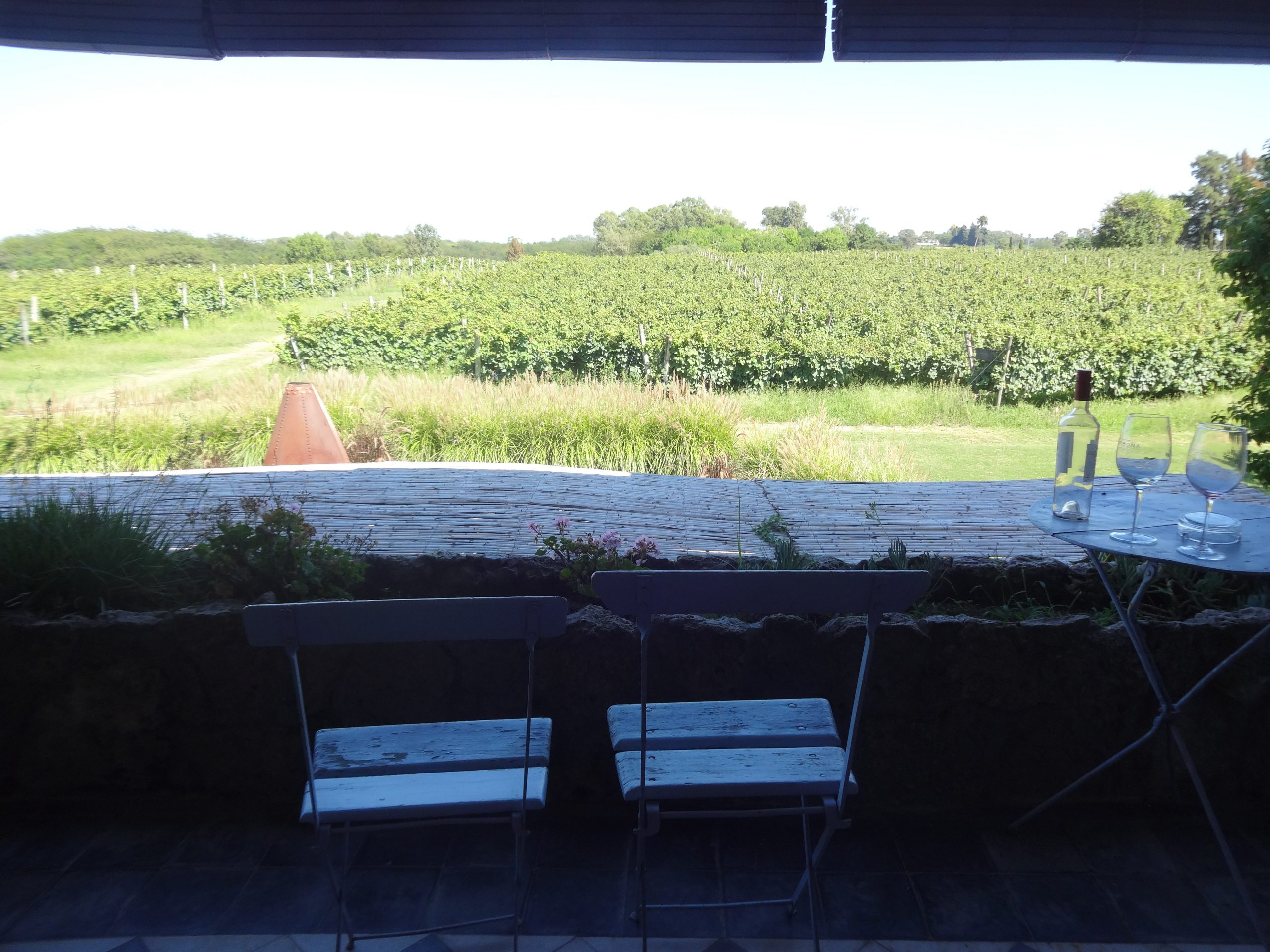 narbona-terraco-vinhos