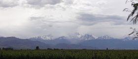 Regiões Vinícolas de Mendoza: Valle do Uco