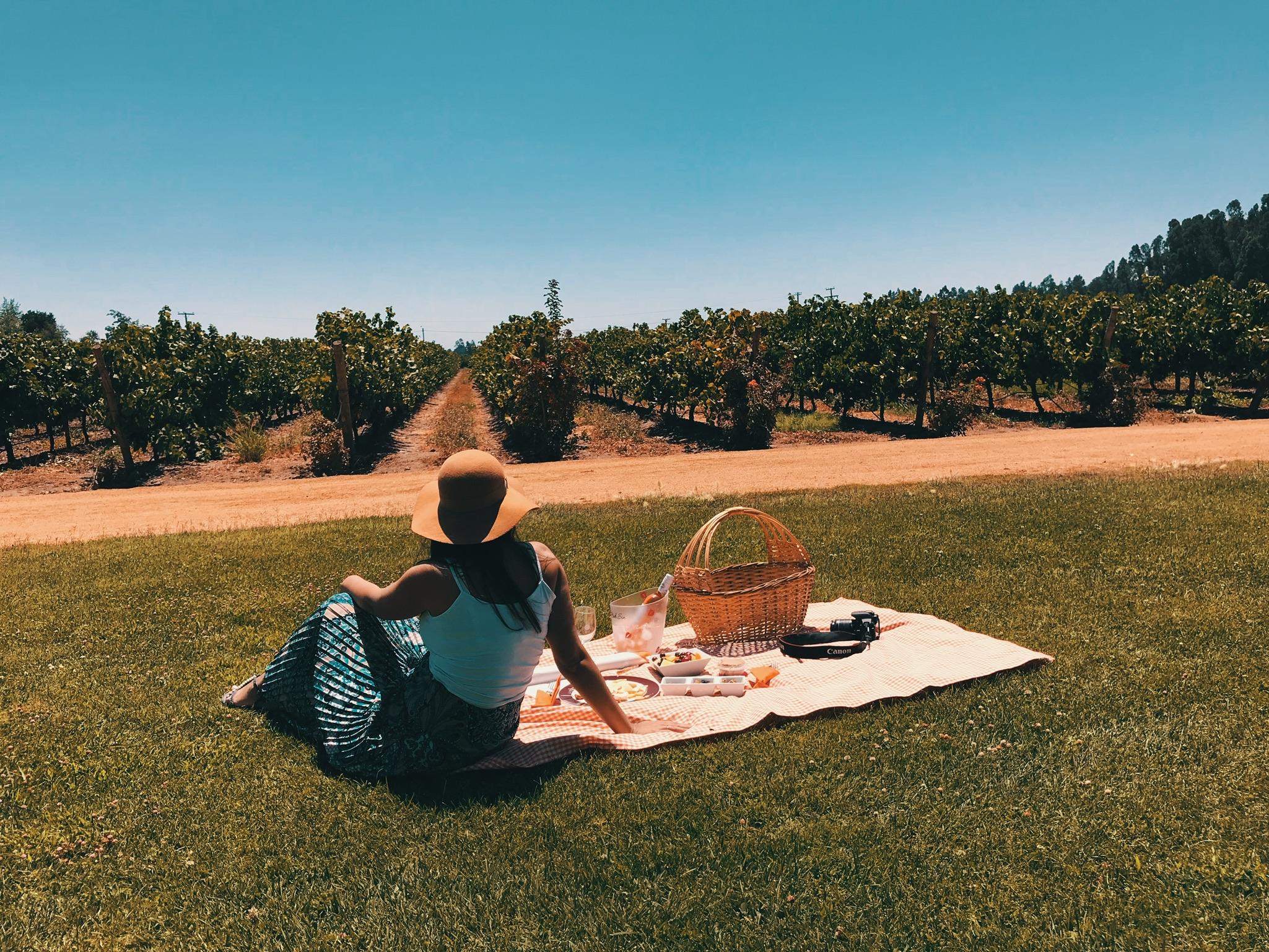 vina_mont_grass_picnic