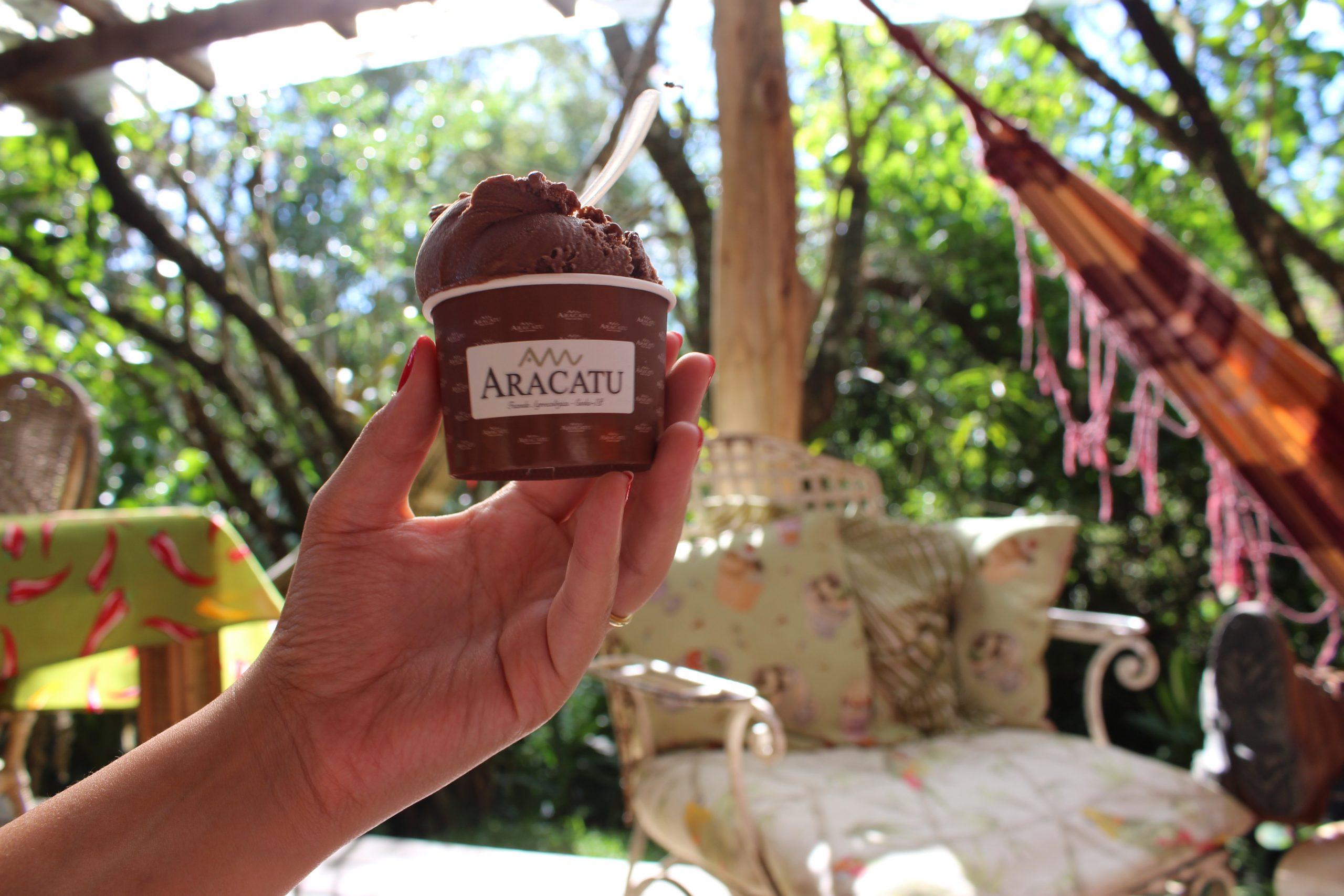 fazenda_aracatu_sorvete