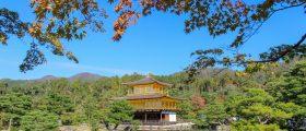 15 dias no Japão: todas as dicas para planejar seu roteiro pelo país do sol nascente