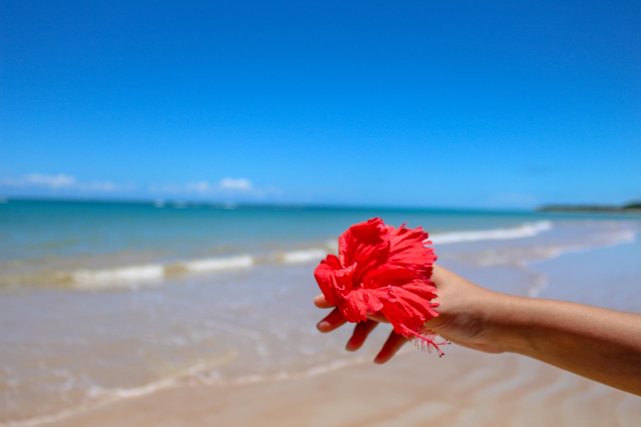 praia_dos_nativos_trancoso
