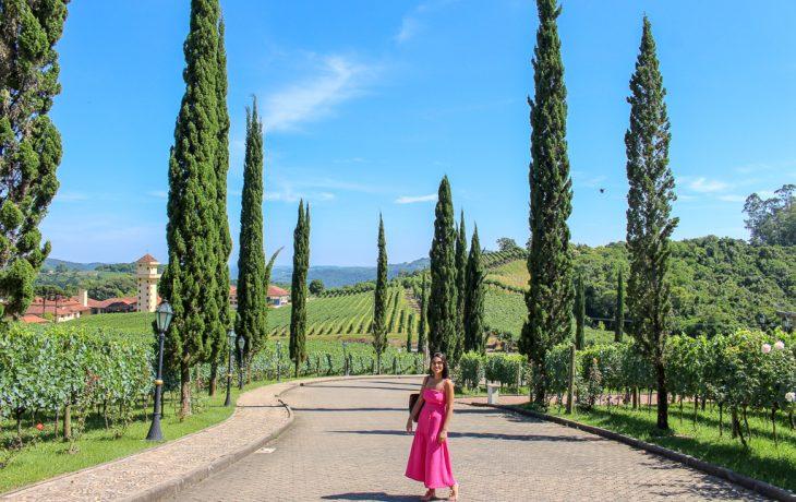 Vale dos Vinhedos: roteiro de vinhos no sul do Brasil