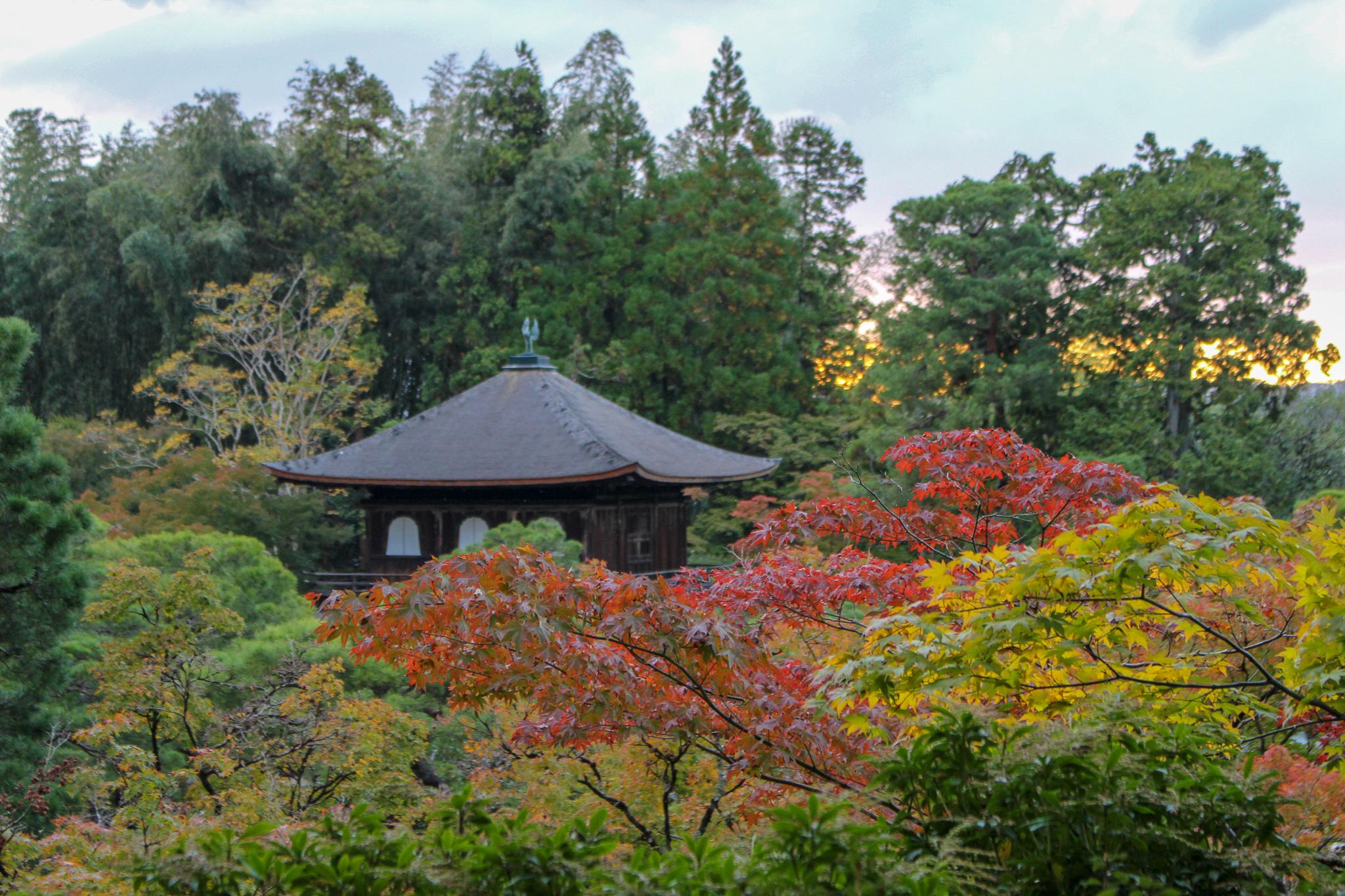 Ginkaku_Ji_templo_de_prata_vista