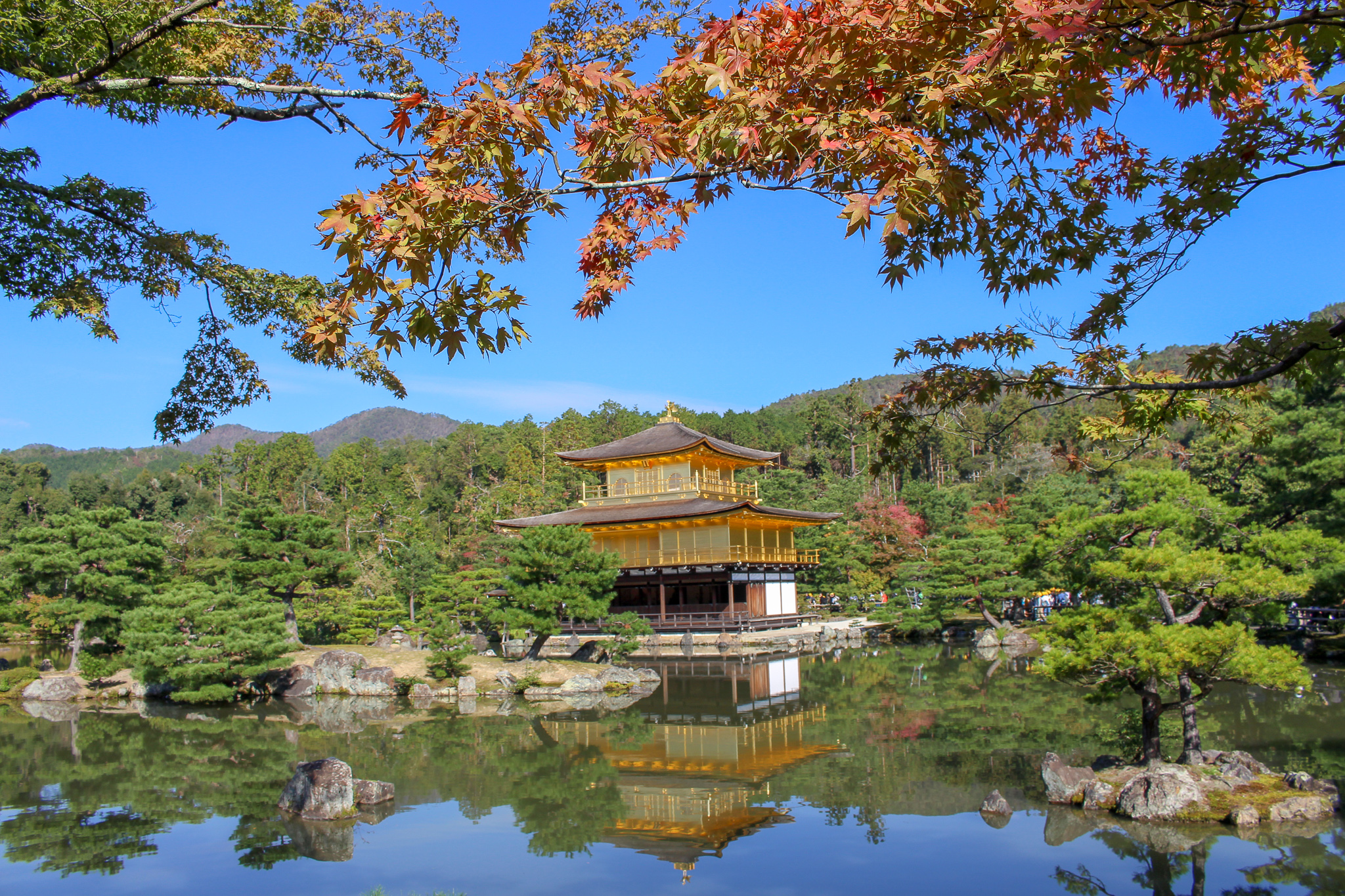 Kinkaku_ji_templo _de_ouro_folhas