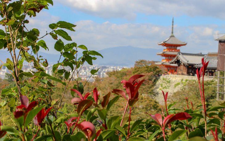Roteiro de 4 dias em Kyoto: descobrindo a magia da cultura milenar japonesa