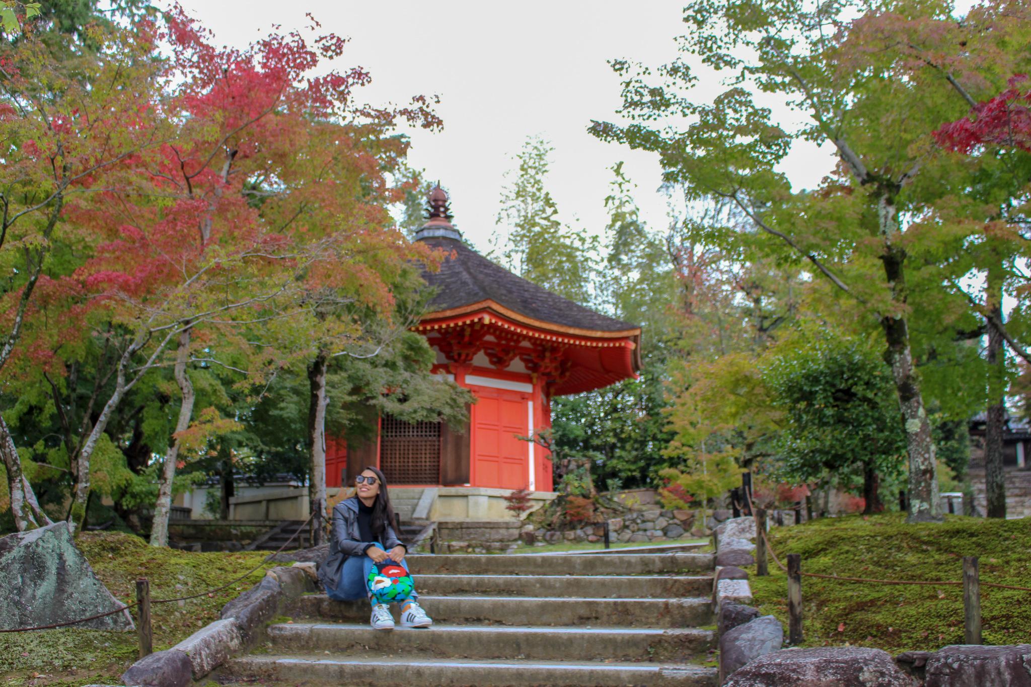 Tofuku_ji _kyoto