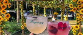 5 lugares imperdíveis para bons drinks no Rio de Janeiro