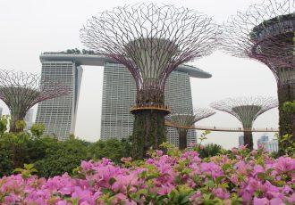 Roteiro de 3 dias em Singapura: uma viagem ao futuro
