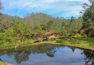 Turismo de isolamento: minha experiência em Petrópolis